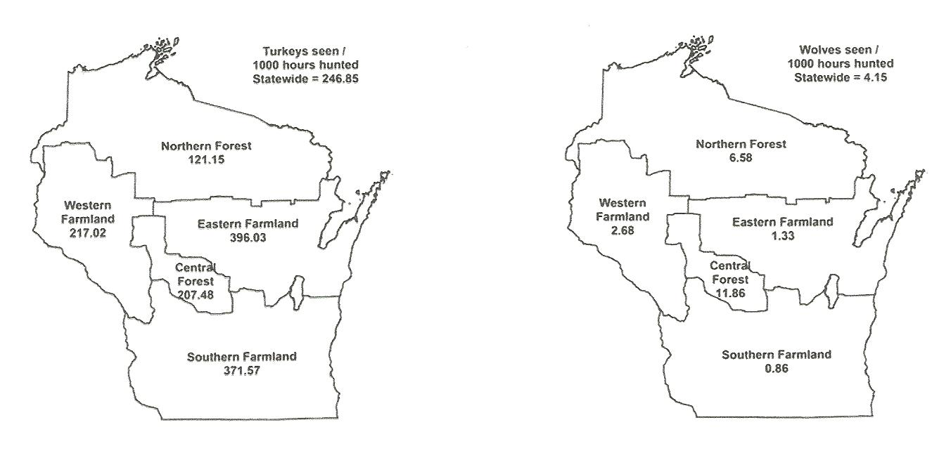 2013 Wisconsin Wild Turkey