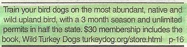 Dog training in Wisconsin for
