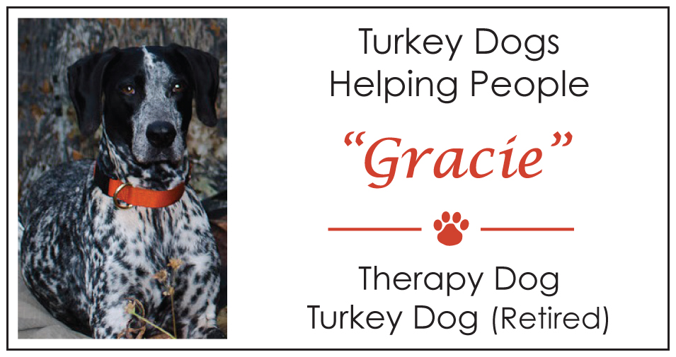 Gracie's turkey dog therapy dog calling card