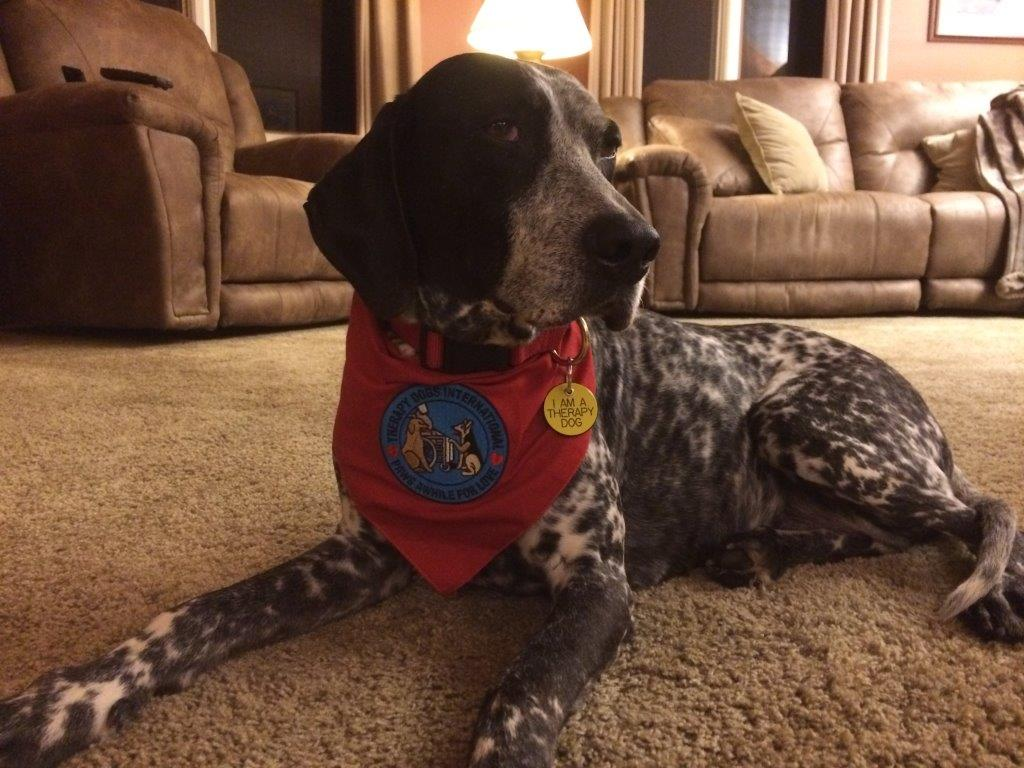 Lynchburg General Therapy Dog Gracie