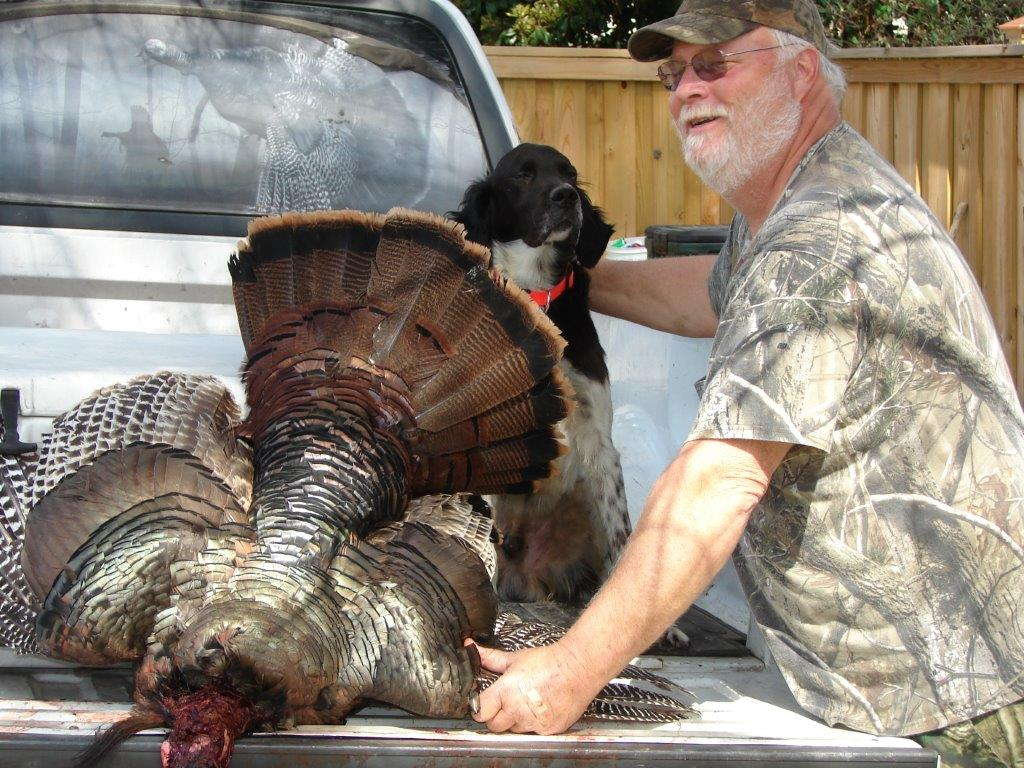 Spring 2013 wild turkey in Virginia