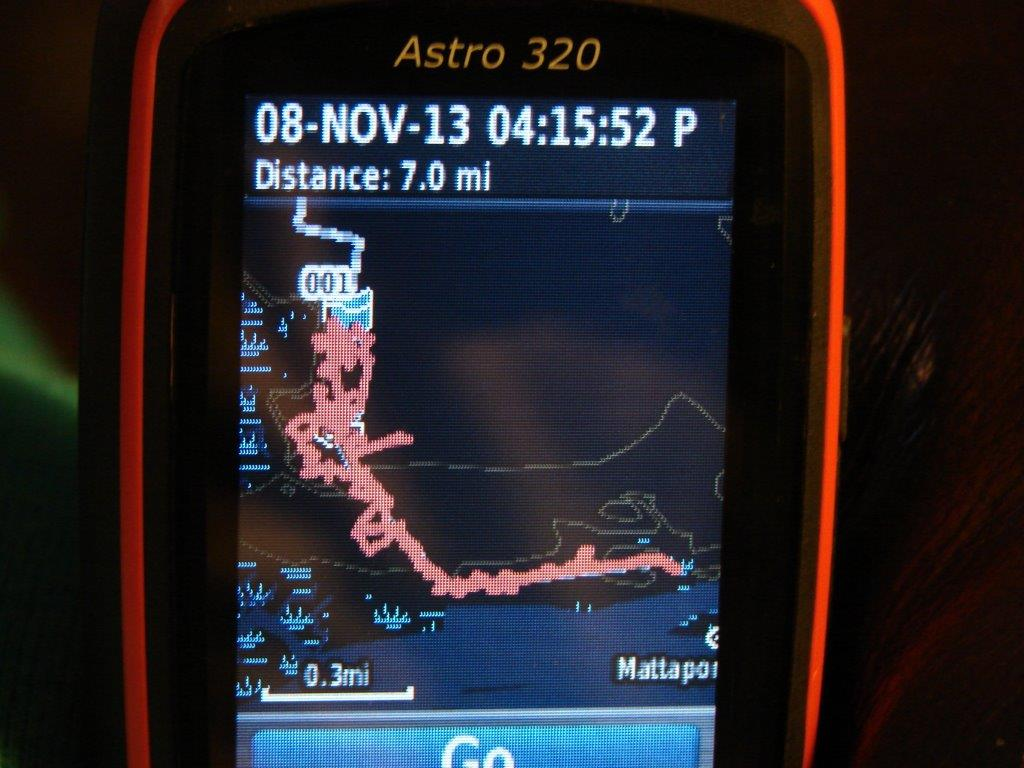 Garmin Astro says Spot ran 7 miles at Mattaponi
