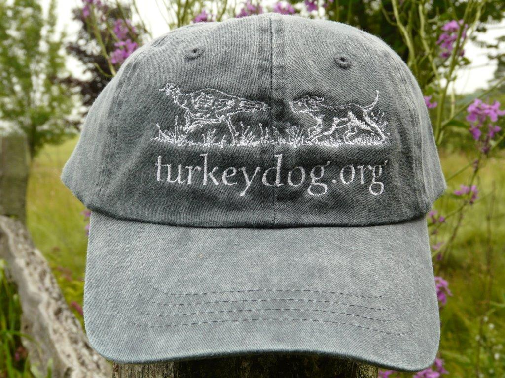Casual hunting cap with logo