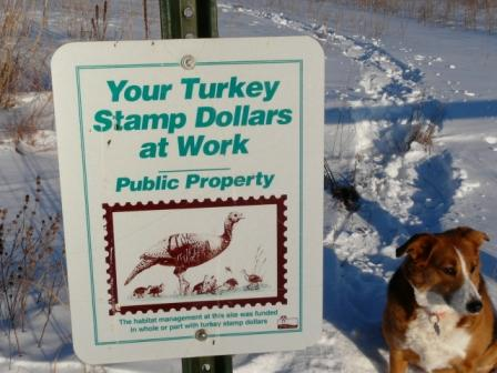 wild turkey stamps